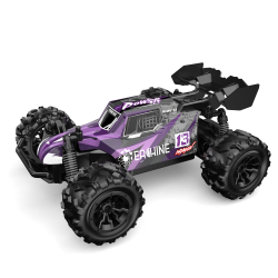 Eachine EAT13 1/20 2.4G RC Car High Speed Off-Road Truck RTR Toy 3.7V 800mAh RC Vehicle - Purple